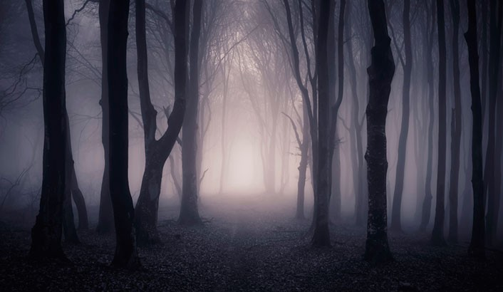 darkness-706x410