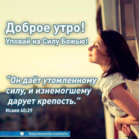 12650838_906278399457580_4680247620331249435_n