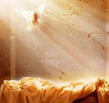 ressurreicao