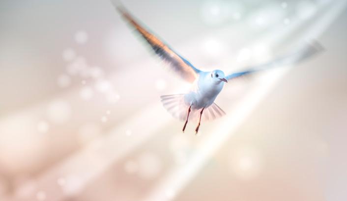 Ação permanente do Espírito Santo